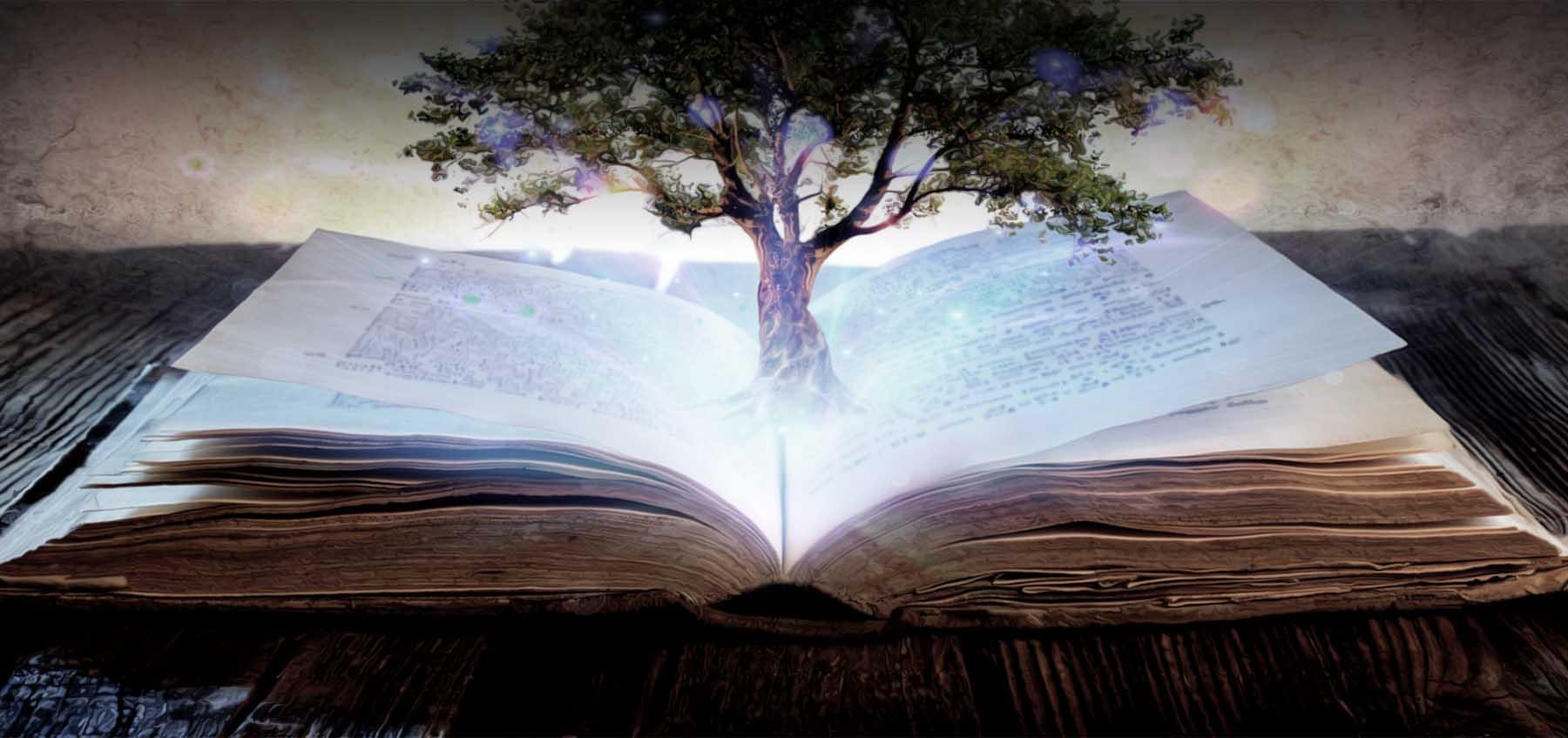 EK Tree of Knowledge